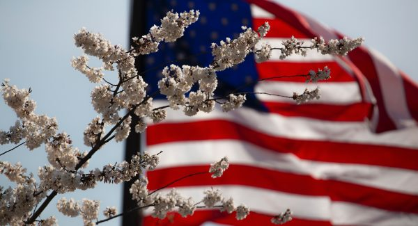 Flowers in foreground, American flag in background