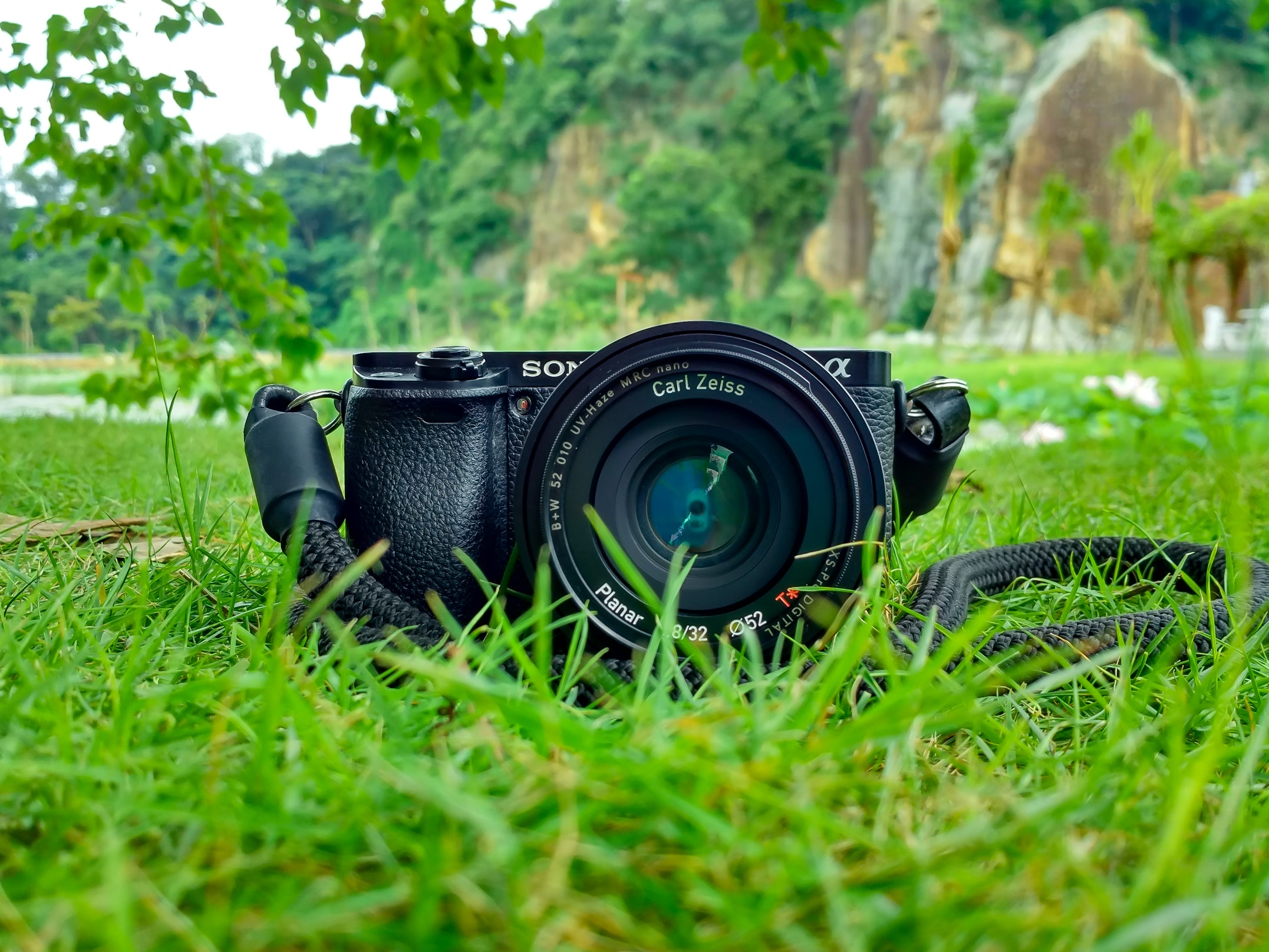 Camera on ground in grass
